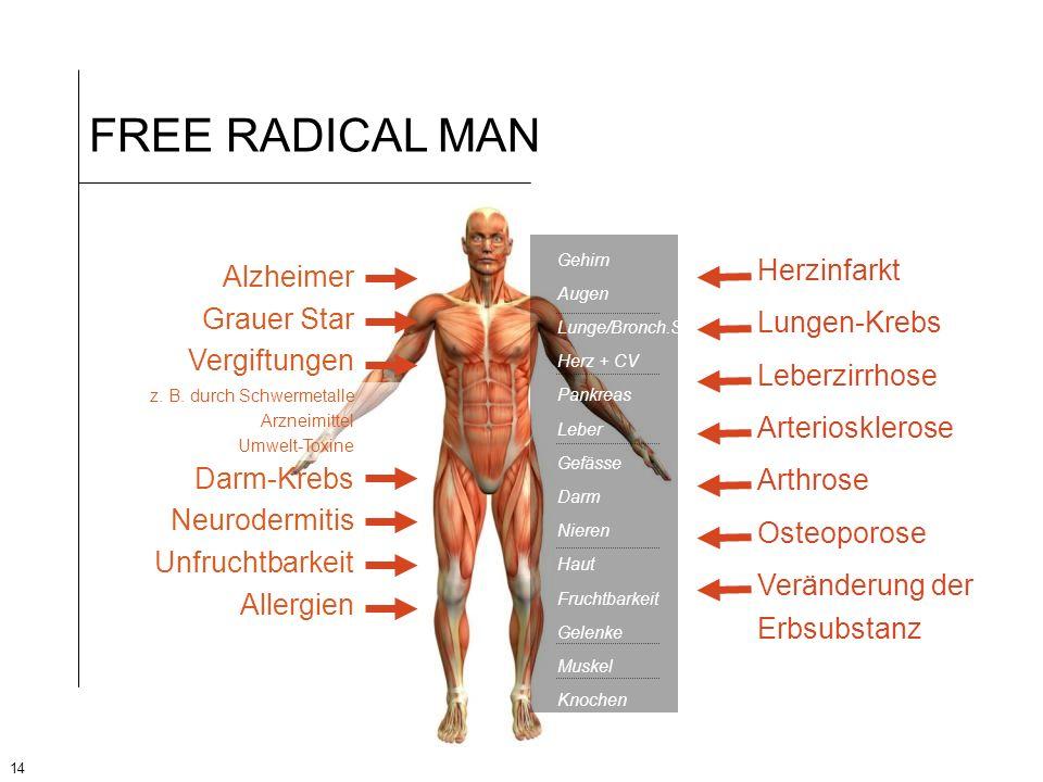 14 FREE RADICAL MAN Alzheimer Grauer Star Vergiftungen z. B. durch Schwermetalle Arzneimittel Umwelt-Toxine Darm-Krebs Neurodermitis Unfruchtbarkeit A