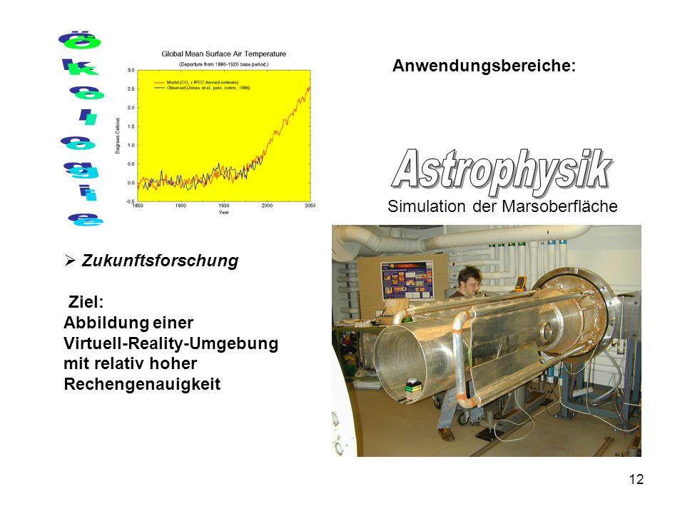 12 Anwendungsbereiche: Zukunftsforschung Ziel: Abbildung einer Virtuell-Reality-Umgebung mit relativ hoher Rechengenauigkeit Simulation der Marsoberfläche
