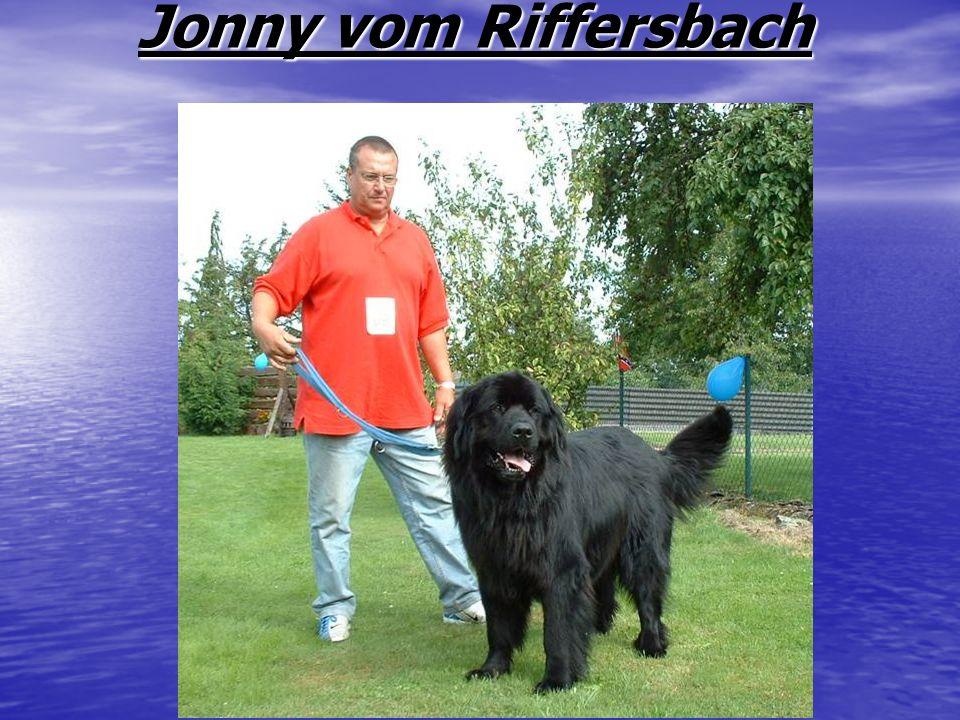 Jonny vom Riffersbach Jonny vom Riffersbach