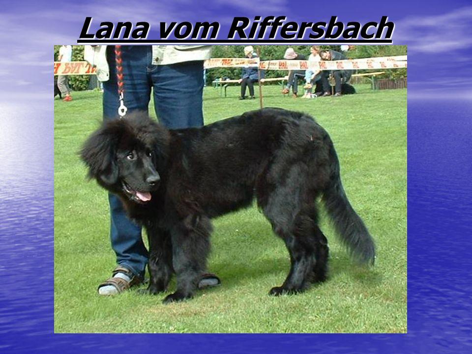 Lana vom Riffersbach Lana vom Riffersbach