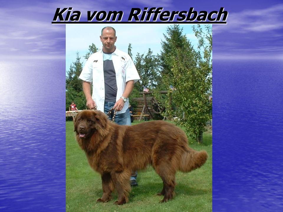 Kia vom Riffersbach Kia vom Riffersbach
