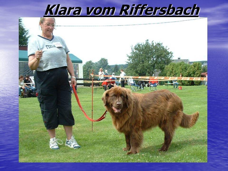 Klara vom Riffersbach Klara vom Riffersbach