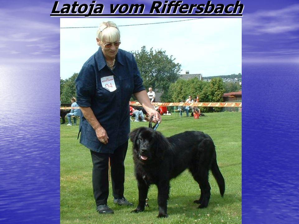 Latoja vom Riffersbach Latoja vom Riffersbach