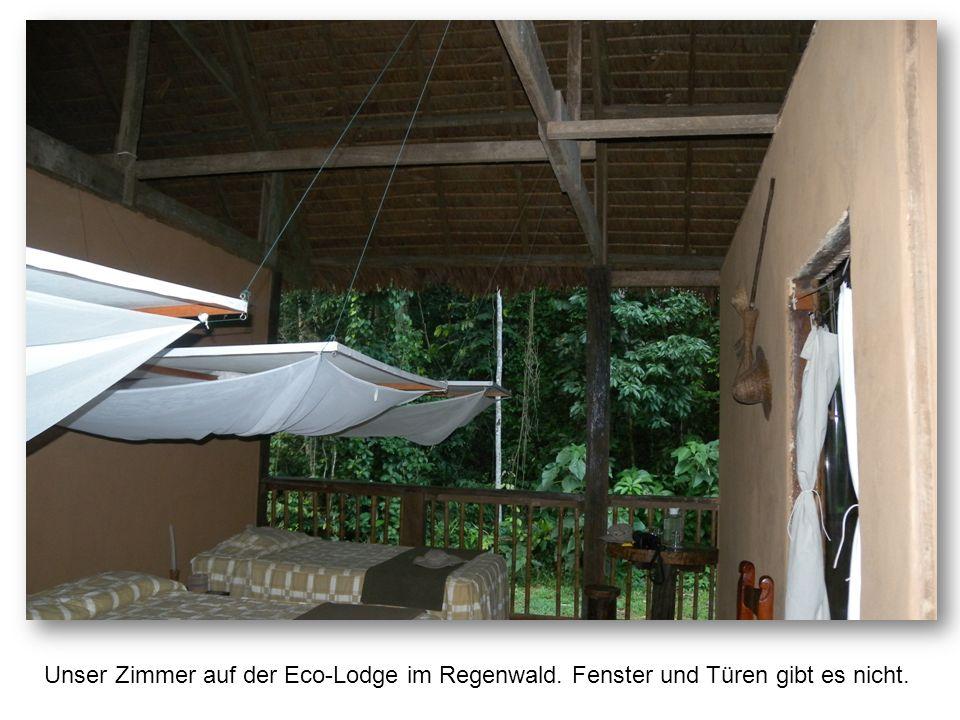 Unser Zimmer auf der Eco-Lodge im Regenwald. Fenster und Türen gibt es nicht.