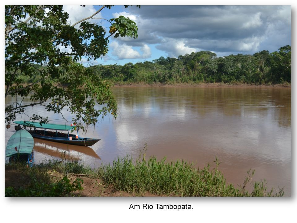 Am Rio Tambopata.
