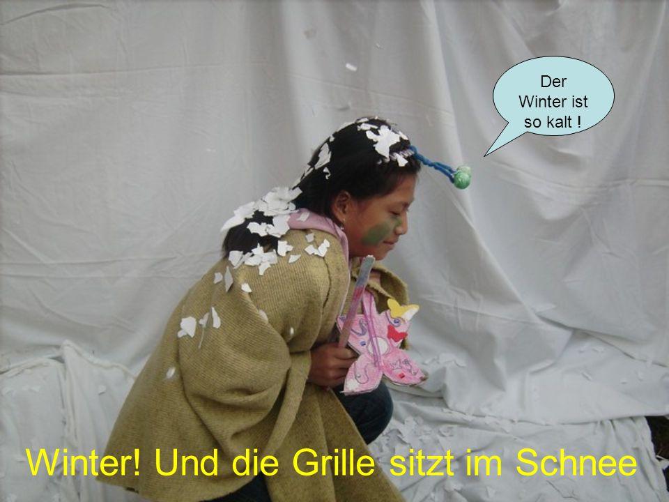 Der Winter ist so kalt ! Winter! Und die Grille sitzt im Schnee