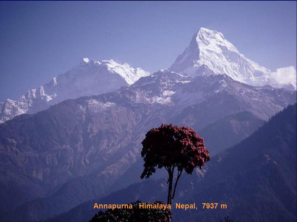 Nanga Parbat Himalaja Pakistan, 8125 m