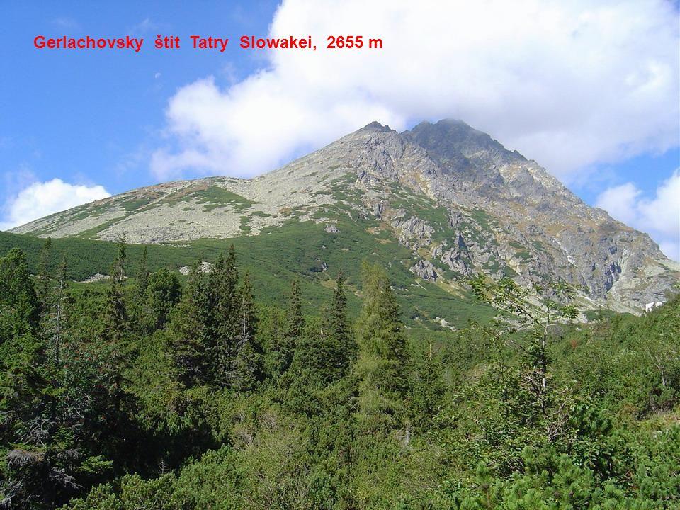 Beskydy Čechy, 1700 m