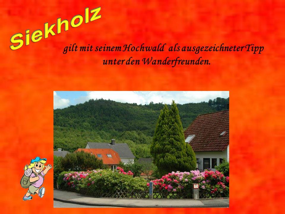 gilt mit seinem Hochwald als ausgezeichneter Tipp unter den Wanderfreunden.