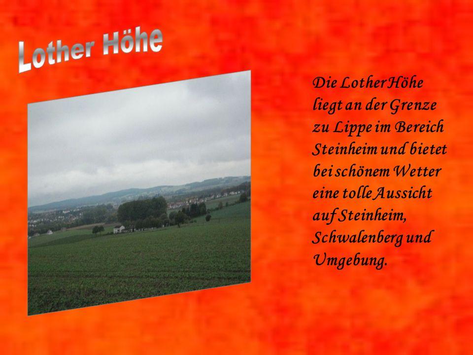 Die Lother Höhe liegt an der Grenze zu Lippe im Bereich Steinheim und bietet bei schönem Wetter eine tolle Aussicht auf Steinheim, Schwalenberg und Umgebung.
