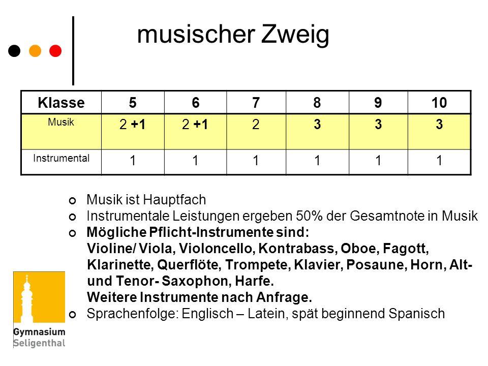 musischer Zweig Klasse5678910 Musik 2 +1 2333 Instrumental 111111 Musik ist Hauptfach Instrumentale Leistungen ergeben 50% der Gesamtnote in Musik Mög
