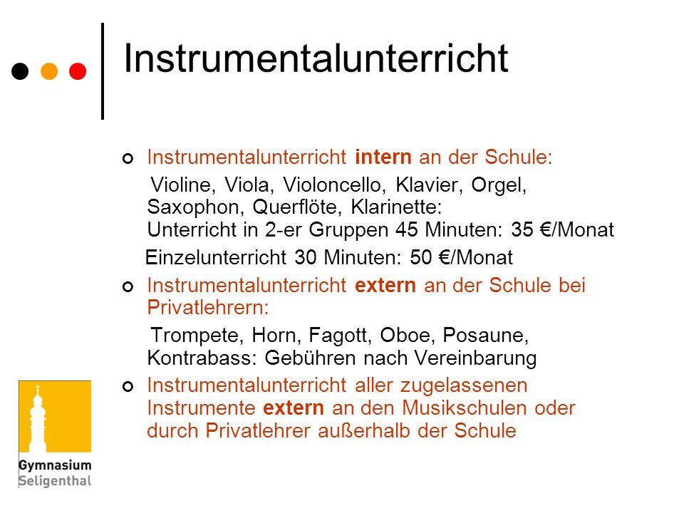 Instrumentalunterricht Instrumentalunterricht intern an der Schule: Violine, Viola, Violoncello, Klavier, Orgel, Saxophon, Querflöte, Klarinette: Unte