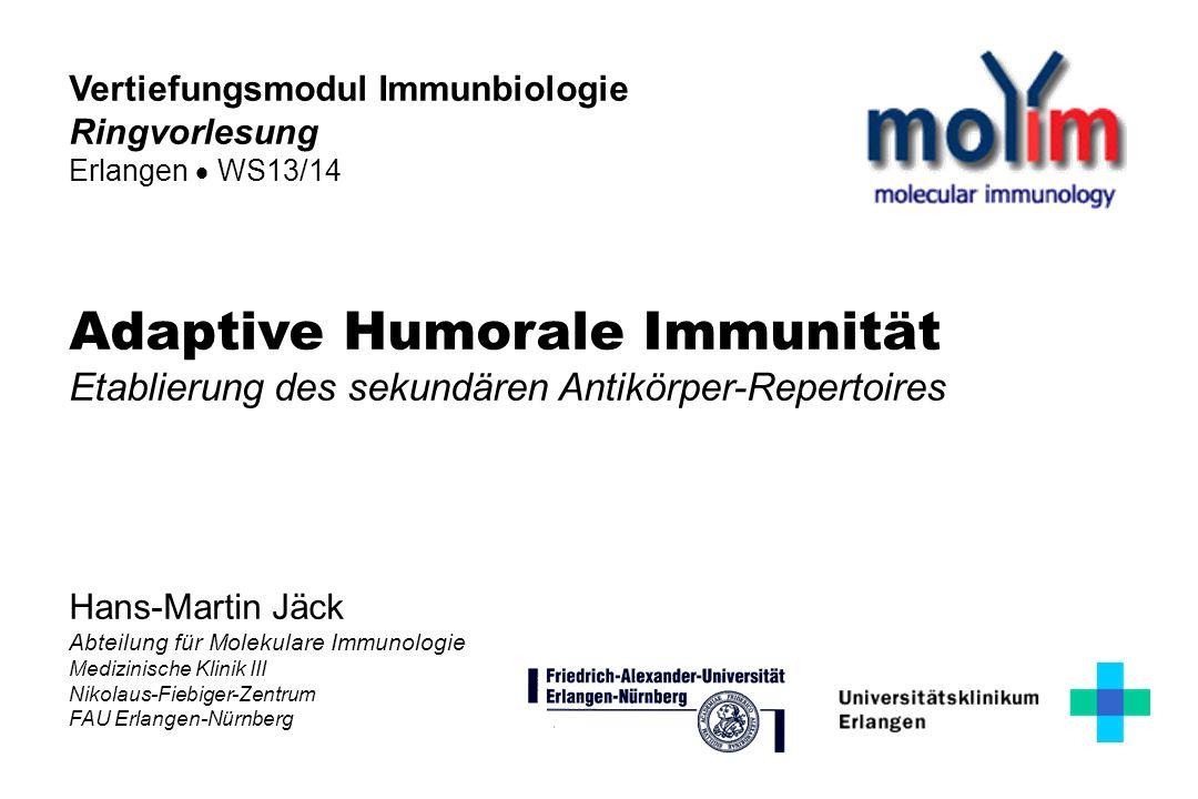 Hans-Martin Jäck Abteilung für Molekulare Immunologie Medizinische Klinik III Nikolaus-Fiebiger-Zentrum FAU Erlangen-Nürnberg Adaptive Humorale Immuni