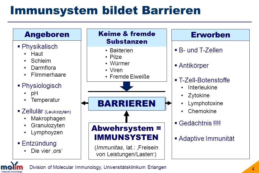 Division of Molecular Immunology, Universitätsklinikum Erlangen 4 Immunsystem bildet Barrieren BARRIEREN Physikalisch Haut Schleim Darmflora Flimmerha
