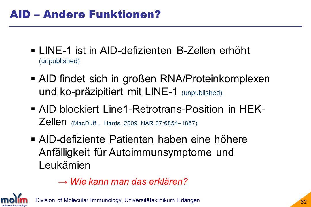 Division of Molecular Immunology, Universitätsklinikum Erlangen 62 AID – Andere Funktionen? LINE-1 ist in AID-defizienten B-Zellen erhöht (unpublished