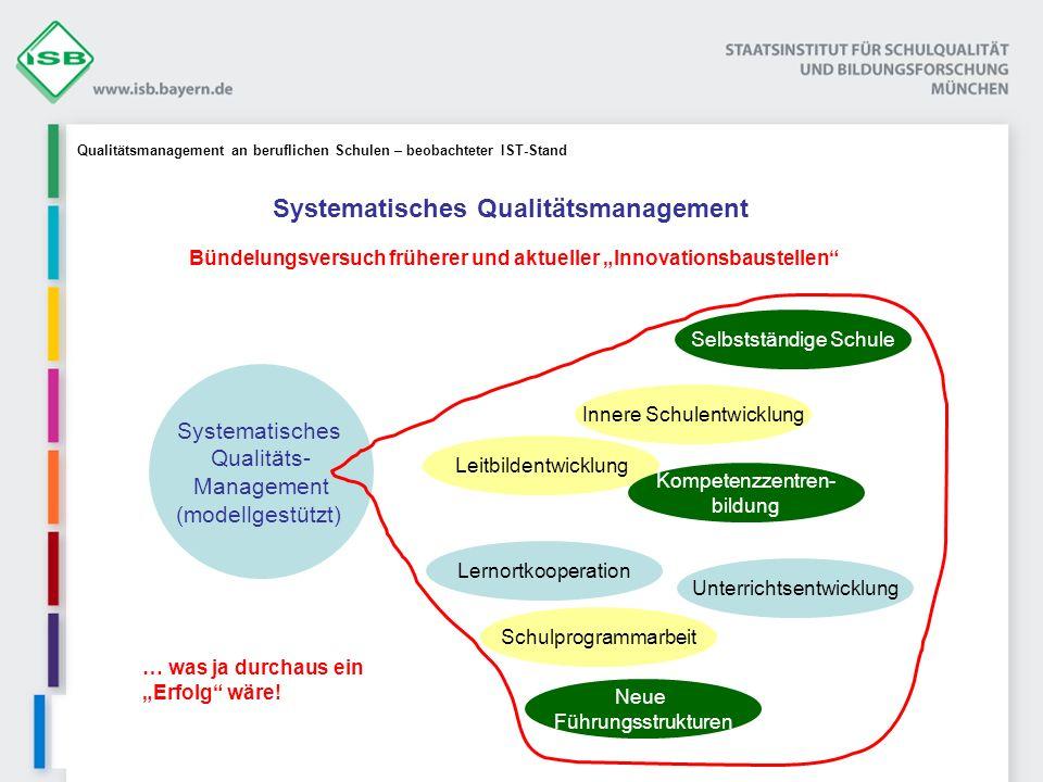 Systematisches Qualitäts- Management (modellgestützt) Leitbildentwicklung Schulprogrammarbeit Lernortkooperation Selbstständige Schule Kompetenzzentre