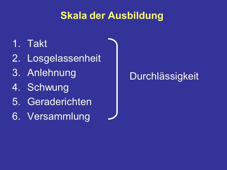 Skala der Ausbildung 1.Takt 2.Losgelassenheit 3.Anlehnung 4.Schwung 5.Geraderichten 6.Versammlung Durchlässigkeit