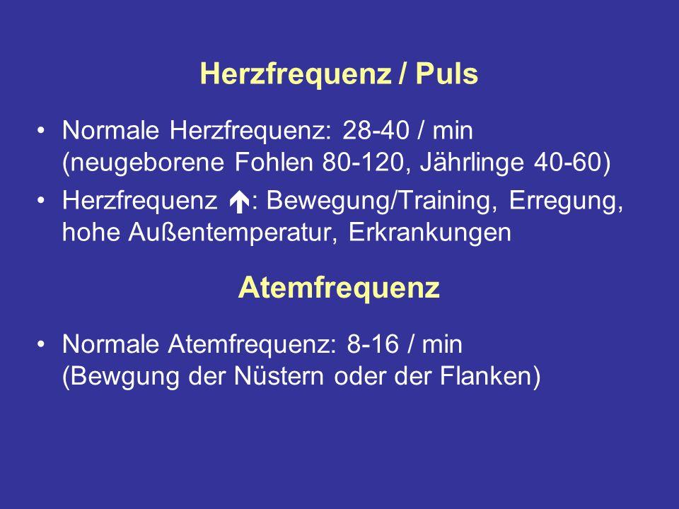 Herzfrequenz / Puls Normale Herzfrequenz: 28-40 / min (neugeborene Fohlen 80-120, Jährlinge 40-60) Herzfrequenz : Bewegung/Training, Erregung, hohe Außentemperatur, Erkrankungen Atemfrequenz Normale Atemfrequenz: 8-16 / min (Bewgung der Nüstern oder der Flanken)