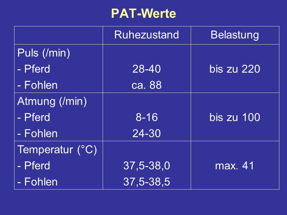 PAT-Werte RuhezustandBelastung Puls (/min) - Pferd - Fohlen 28-40 ca.