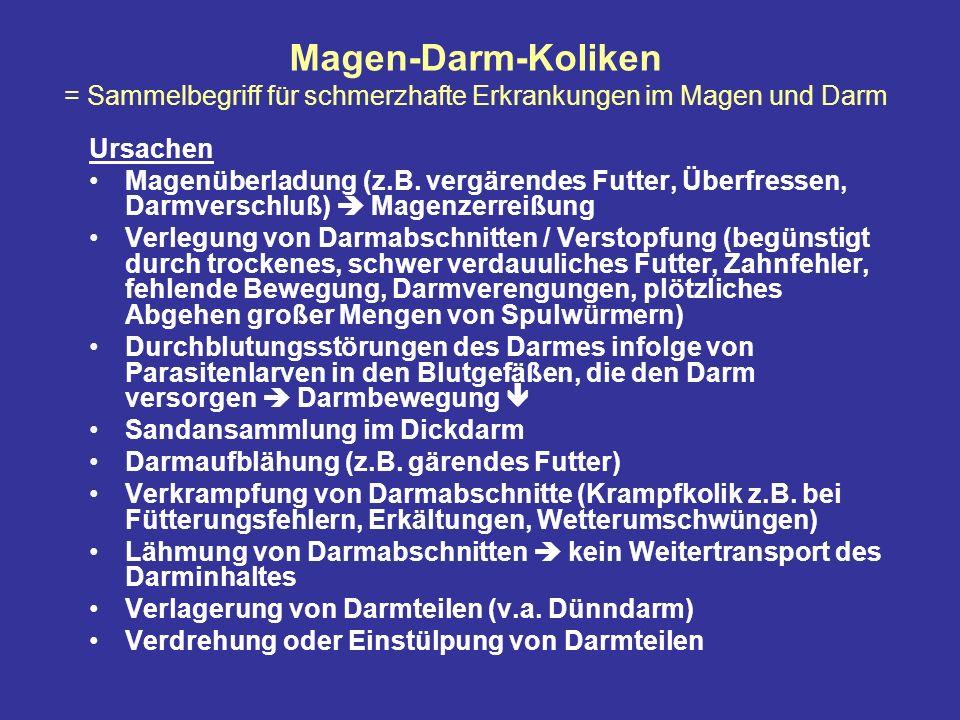 Magen-Darm-Koliken = Sammelbegriff für schmerzhafte Erkrankungen im Magen und Darm Ursachen Magenüberladung (z.B.