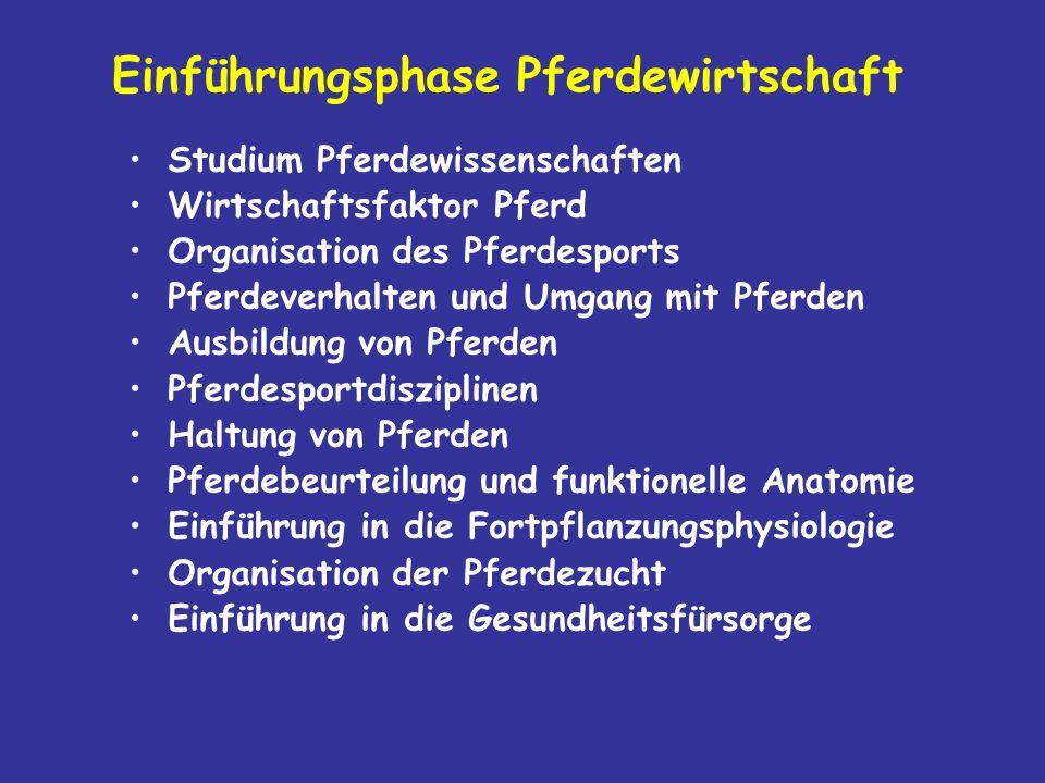 Exterieurbeurteilung Warmblut Hannoversches Modell 4.