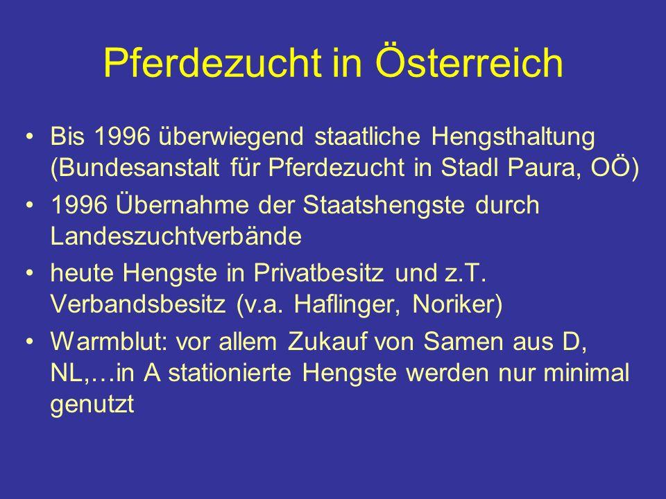 Pferdezucht in Österreich Bis 1996 überwiegend staatliche Hengsthaltung (Bundesanstalt für Pferdezucht in Stadl Paura, OÖ) 1996 Übernahme der Staatshengste durch Landeszuchtverbände heute Hengste in Privatbesitz und z.T.