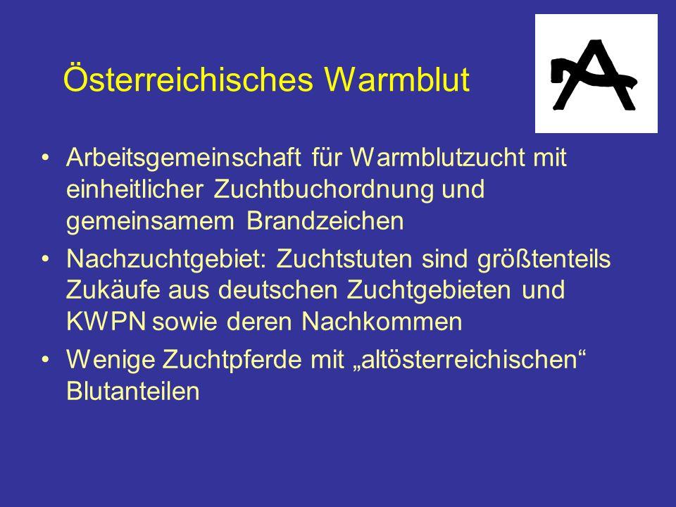 Österreichisches Warmblut Arbeitsgemeinschaft für Warmblutzucht mit einheitlicher Zuchtbuchordnung und gemeinsamem Brandzeichen Nachzuchtgebiet: Zuchtstuten sind größtenteils Zukäufe aus deutschen Zuchtgebieten und KWPN sowie deren Nachkommen Wenige Zuchtpferde mit altösterreichischen Blutanteilen