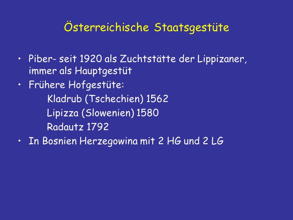 Österreichische Staatsgestüte Piber- seit 1920 als Zuchtstätte der Lippizaner, immer als Hauptgestüt Frühere Hofgestüte: Kladrub (Tschechien) 1562 Lipizza (Slowenien) 1580 Radautz 1792 In Bosnien Herzegowina mit 2 HG und 2 LG