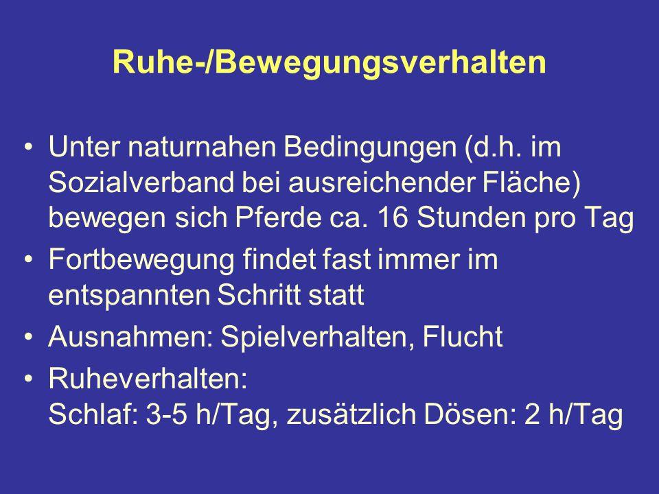 Ruhe-/Bewegungsverhalten Unter naturnahen Bedingungen (d.h.