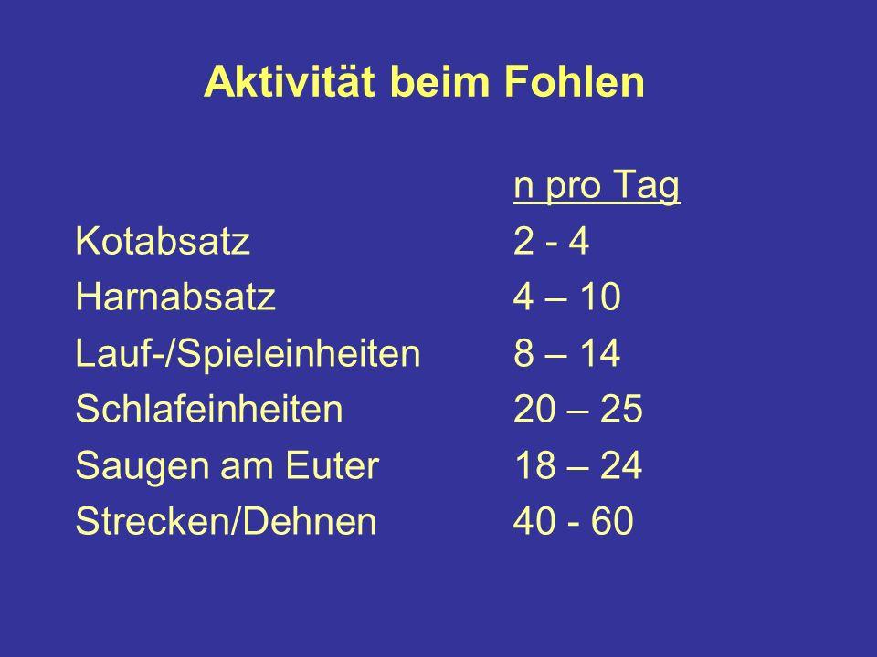 Aktivität beim Fohlen n pro Tag Kotabsatz2 - 4 Harnabsatz4 – 10 Lauf-/Spieleinheiten8 – 14 Schlafeinheiten20 – 25 Saugen am Euter18 – 24 Strecken/Dehnen40 - 60