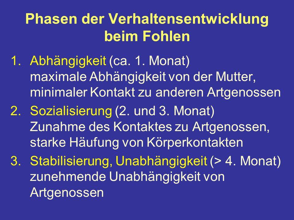 Phasen der Verhaltensentwicklung beim Fohlen 1.Abhängigkeit (ca.