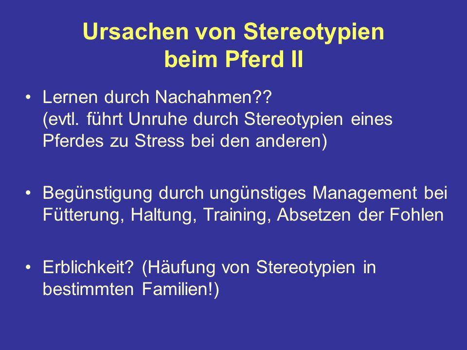 Ursachen von Stereotypien beim Pferd II Lernen durch Nachahmen?.