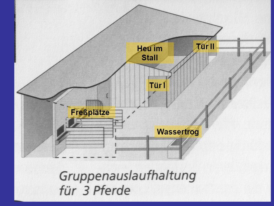 Tür I Tür II Freßplätze Wassertrog Heu im Stall