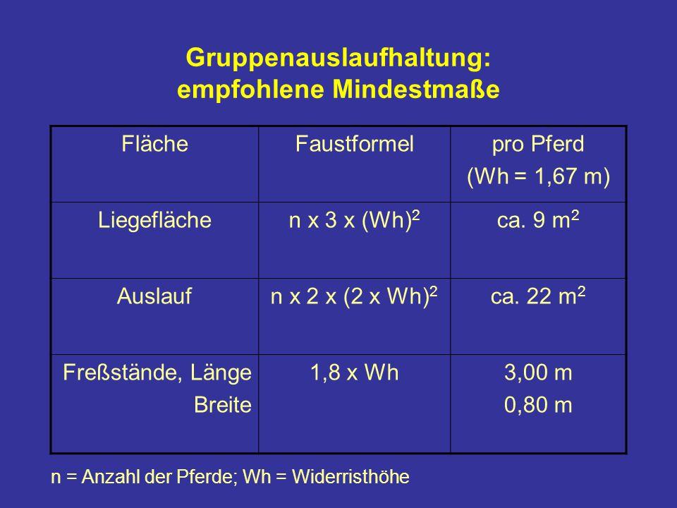 Gruppenauslaufhaltung: empfohlene Mindestmaße FlächeFaustformelpro Pferd (Wh = 1,67 m) Liegeflächen x 3 x (Wh) 2 ca.