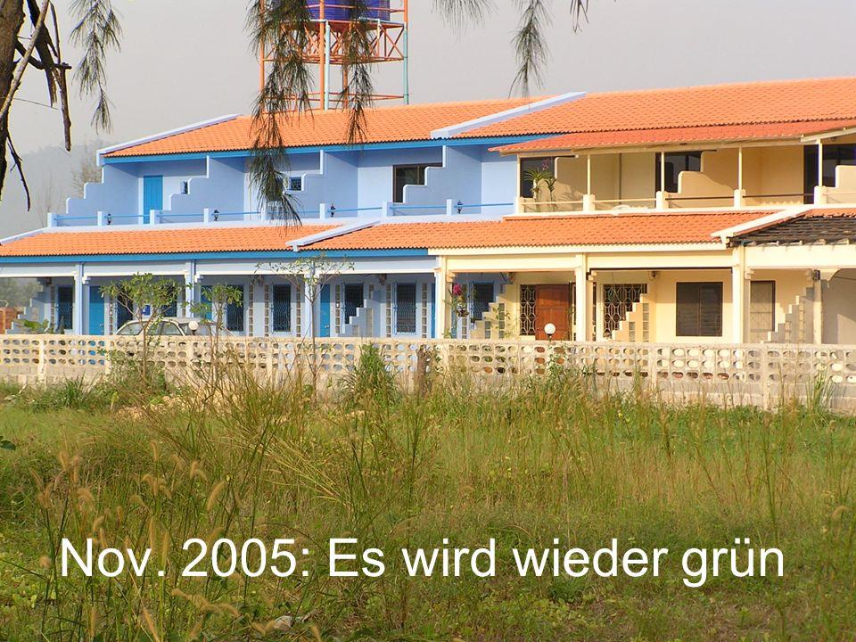 Nov. 2005: Es wird wieder grün
