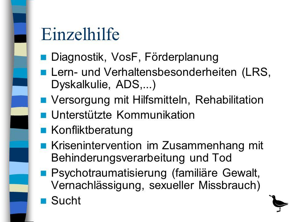 Einzelhilfe Diagnostik, VosF, Förderplanung Lern- und Verhaltensbesonderheiten (LRS, Dyskalkulie, ADS,...) Versorgung mit Hilfsmitteln, Rehabilitation