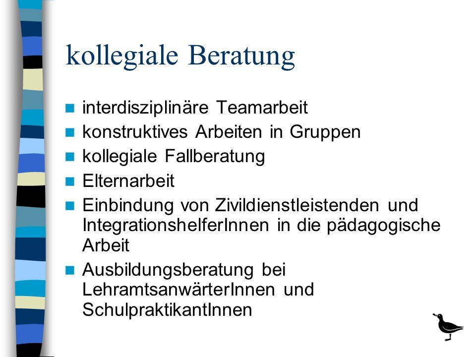kollegiale Beratung interdisziplinäre Teamarbeit konstruktives Arbeiten in Gruppen kollegiale Fallberatung Elternarbeit Einbindung von Zivildienstleis