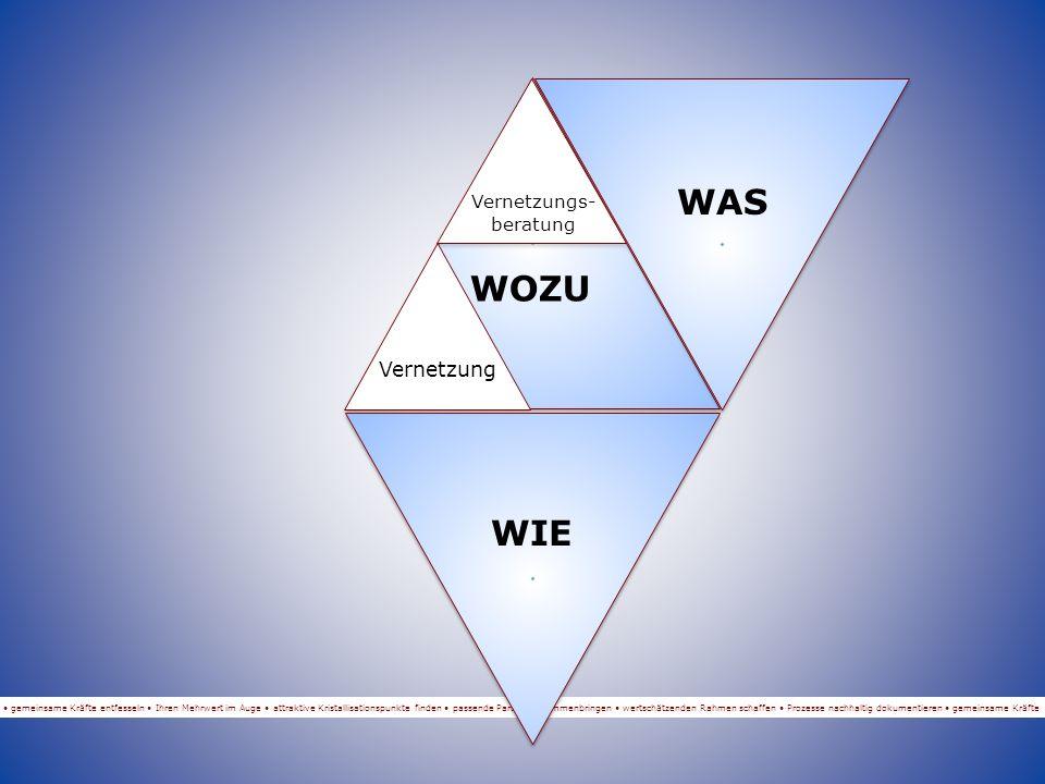 gemeinsame Kräfte entfesseln Ihren Mehrwert im Auge attraktive Kristallisationspunkte finden passende Partner zusammenbringen wertschätzenden Rahmen schaffen Prozesse nachhaltig dokumentieren gemeinsame Kräfte WOZU WAS WIE WER Vernetzung Vernetzungs- beratung Wolfgang Fänderl Vernetzungs- beratung
