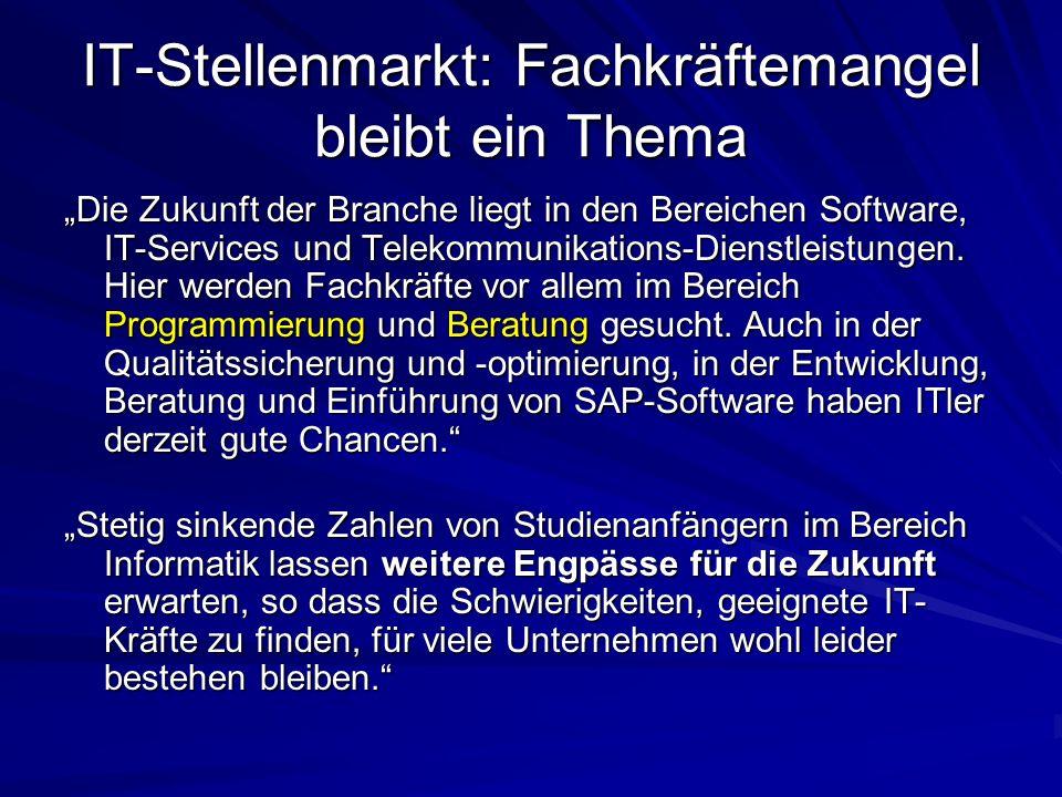 IT-Stellenmarkt: Fachkräftemangel bleibt ein Thema Die Zukunft der Branche liegt in den Bereichen Software, IT-Services und Telekommunikations-Dienstl