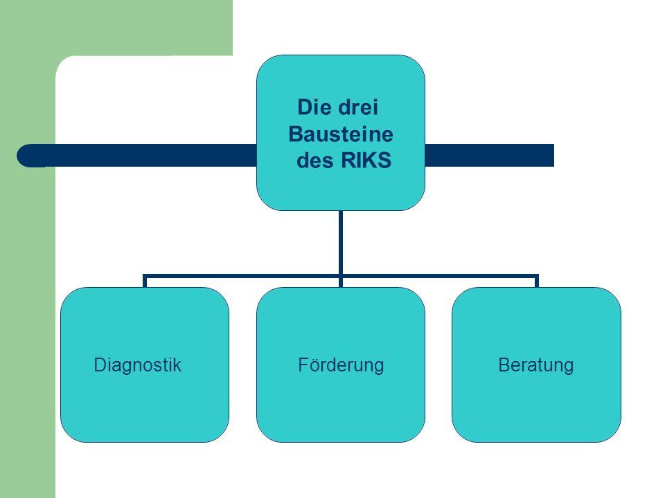 Die drei Bausteine des RIKS DiagnostikFörderungBeratung