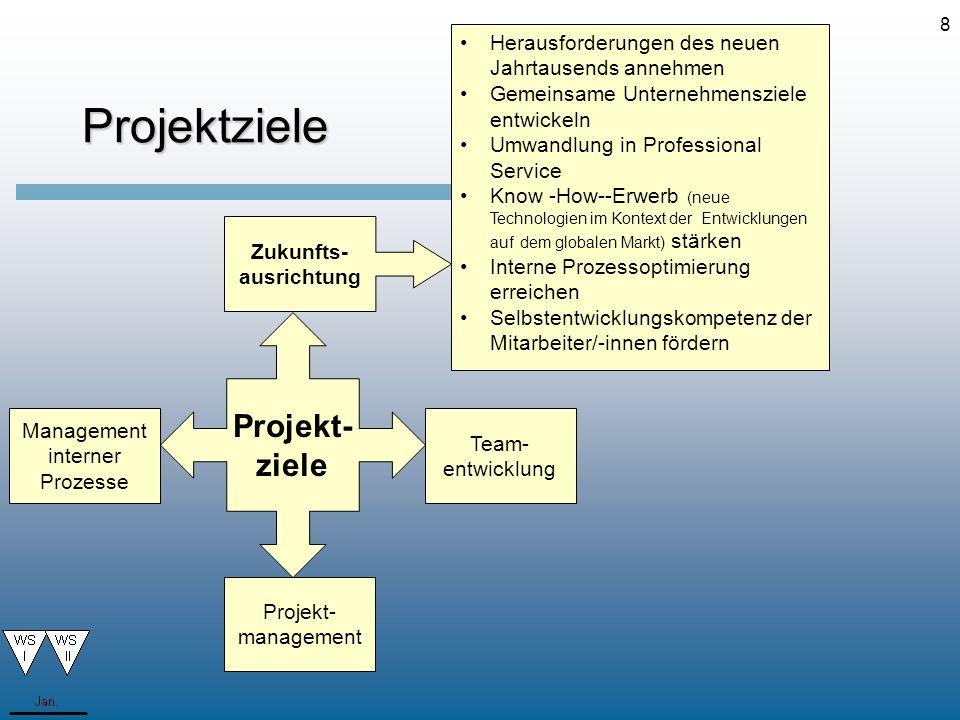 8 Team- entwicklung Projektziele Herausforderungen des neuen Jahrtausends annehmen Gemeinsame Unternehmensziele entwickeln Umwandlung in Professional