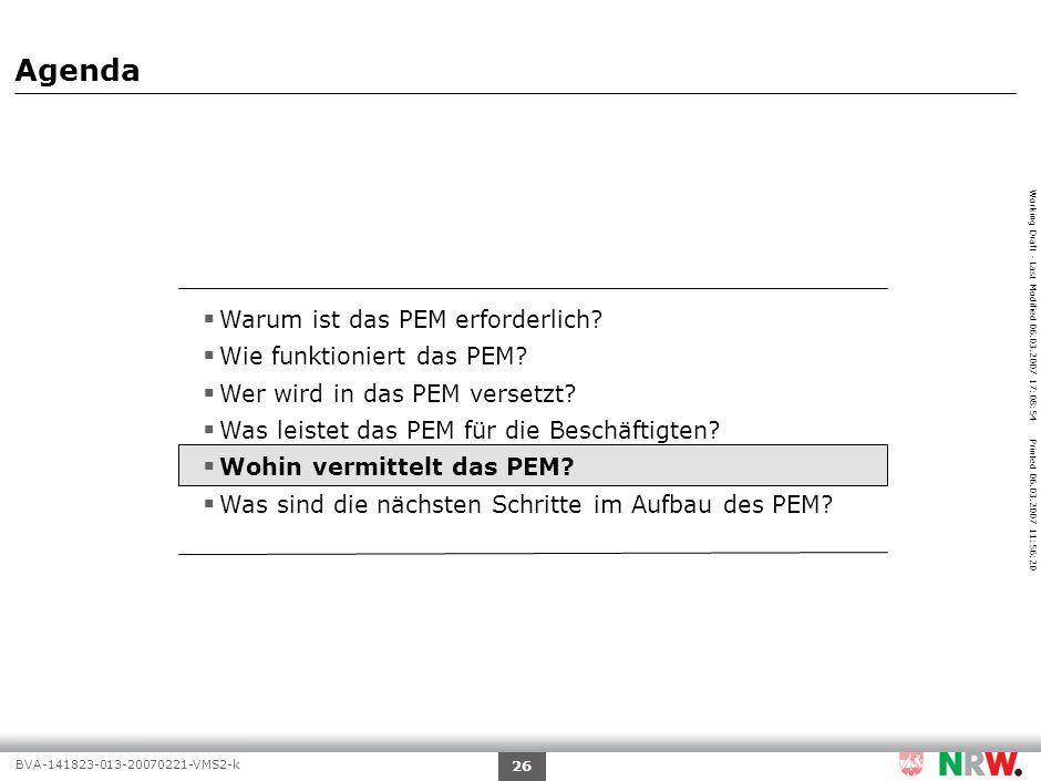 Working Draft - Last Modified 06.03.2007 17:08:54 Printed 06.03.2007 11:56:20 BVA-141823-013-20070221-VMS2-k 26 Agenda Warum ist das PEM erforderlich.
