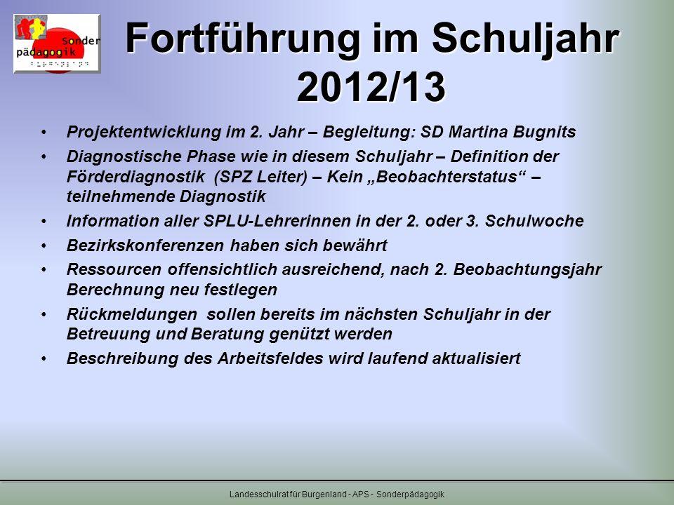 Fortführung im Schuljahr 2012/13 Projektentwicklung im 2. Jahr – Begleitung: SD Martina Bugnits Diagnostische Phase wie in diesem Schuljahr – Definiti