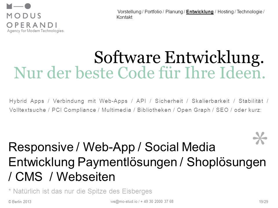 * Software Entwicklung.