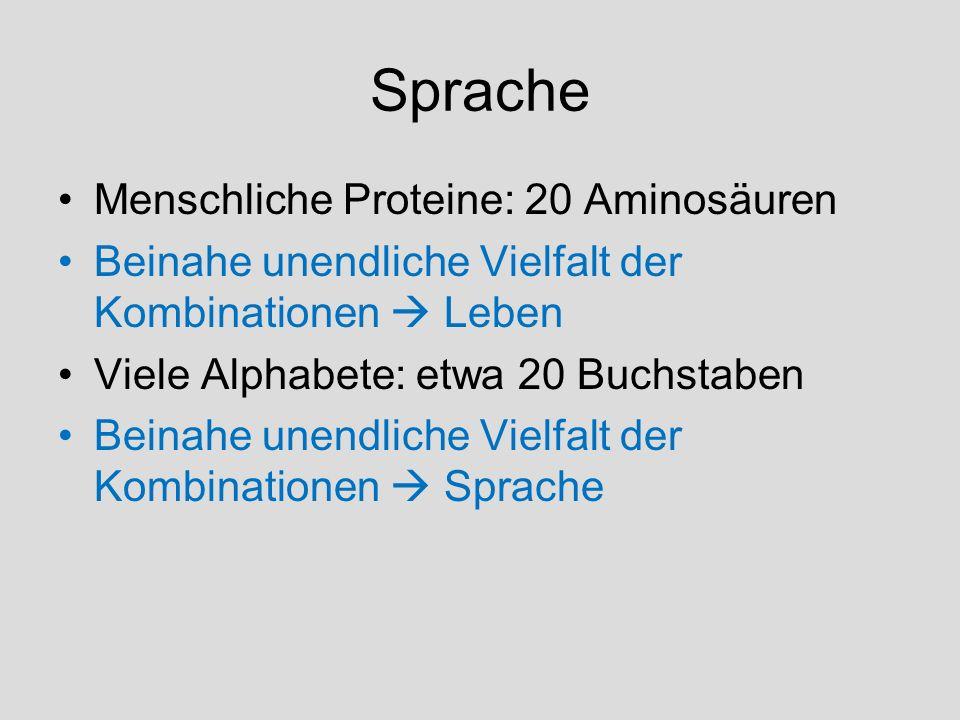 Sprache Menschliche Proteine: 20 Aminosäuren Beinahe unendliche Vielfalt der Kombinationen Leben Viele Alphabete: etwa 20 Buchstaben Beinahe unendlich