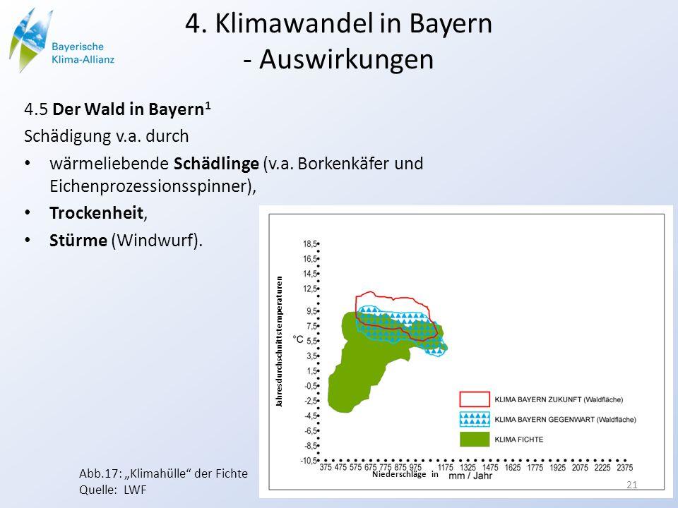 4. Klimawandel in Bayern - Auswirkungen 4.5 Der Wald in Bayern 1 Schädigung v.a. durch wärmeliebende Schädlinge (v.a. Borkenkäfer und Eichenprozession