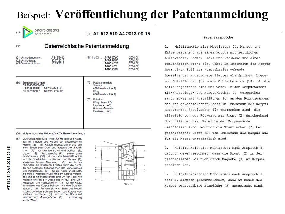 Beispiel: Veröffentlichung der Patentanmeldung