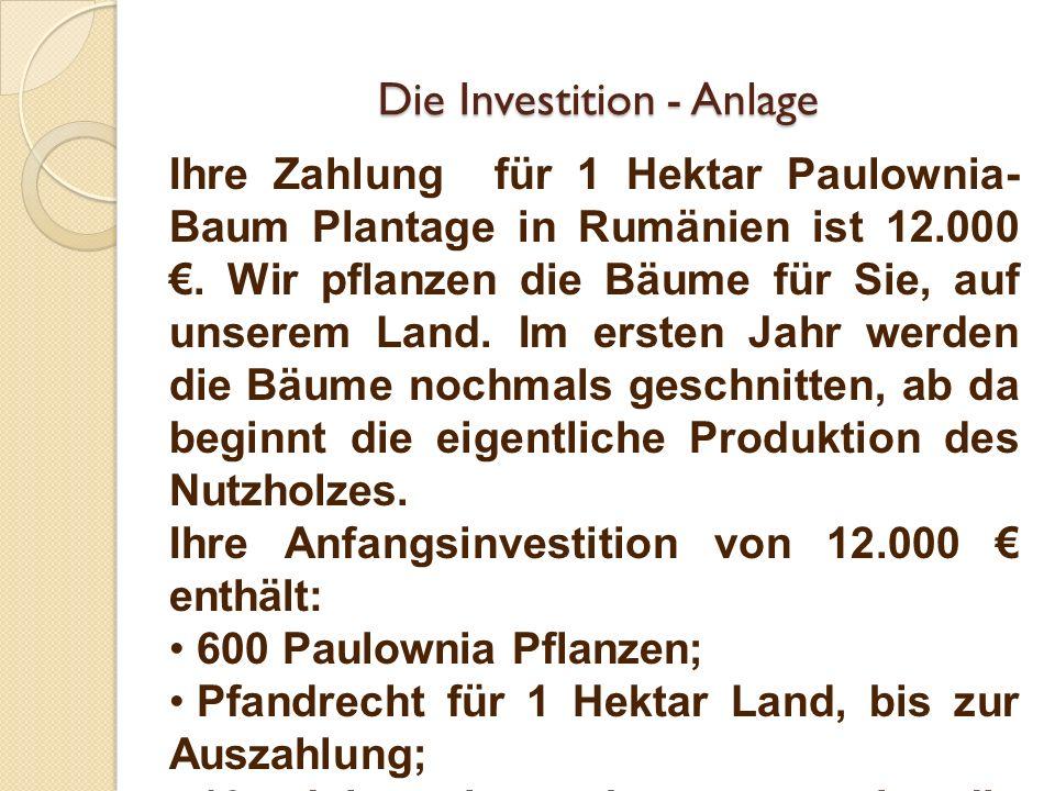 Die Investition - Anlage Ihre Zahlung für 1 Hektar Paulownia- Baum Plantage in Rumänien ist 12.000. Wir pflanzen die Bäume für Sie, auf unserem Land.