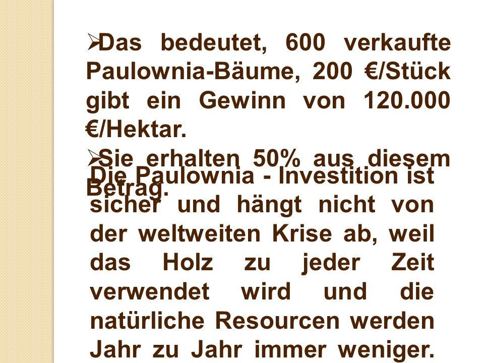 Das bedeutet, 600 verkaufte Paulownia-Bäume, 200 /Stück gibt ein Gewinn von 120.000 /Hektar. Sie erhalten 50% aus diesem Betrag. Die Paulownia - Inves
