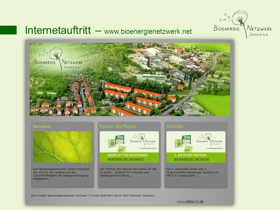 Internetauftritt – www.bioenergienetzwerk.net